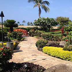 Performance Landscapes Provides Landscape Design, Installation, Renovation,  Repair, Consulting, And Maintenance. We Are Fully Insured And Are A  Licensed ...